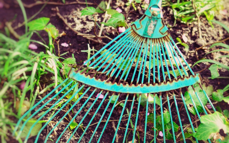 Voorlichting over duurzame onkruidbestrijding blijft nodig
