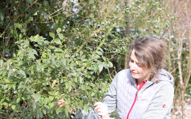 Mariska vertelt waarom biologische plantjes beter zijn #2