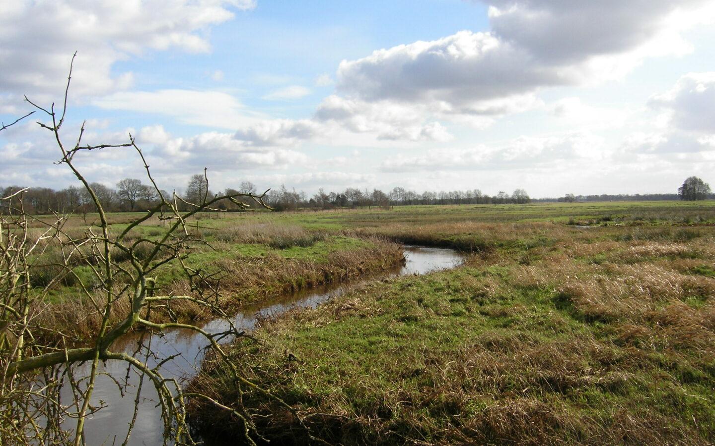 Goed nieuws voor de waterkwaliteit in de Drentsche Aa